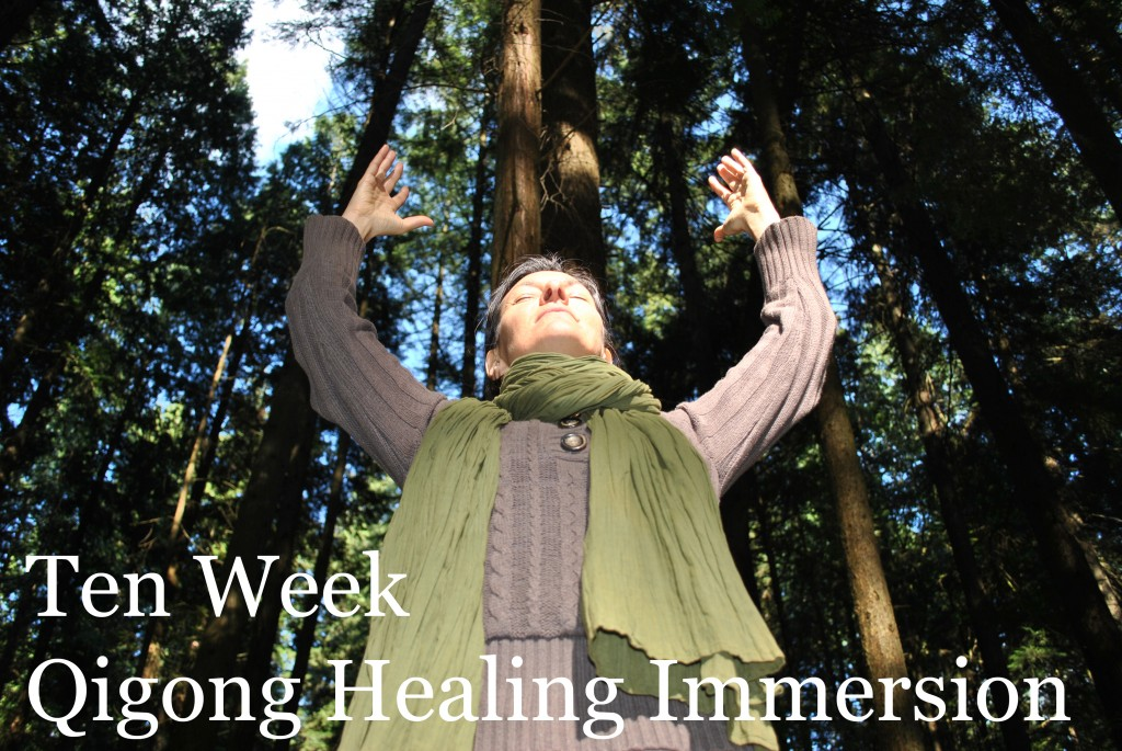 Ten Week Qigong Healing Immersion Course Medical Intuitive Assessment